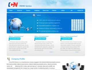 cndnsservice.com screenshot