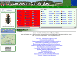 coleokat.de screenshot
