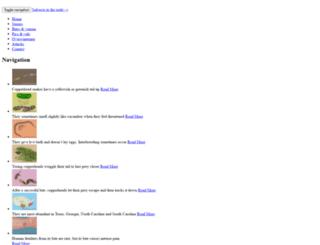 copperheadsnake.net screenshot