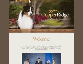 copperridgeaussies.com screenshot