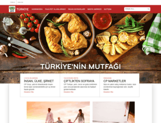 cpturkiye.com screenshot