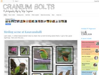 craniumbolts.blogspot.com screenshot
