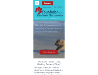 ctca-foundation.org screenshot