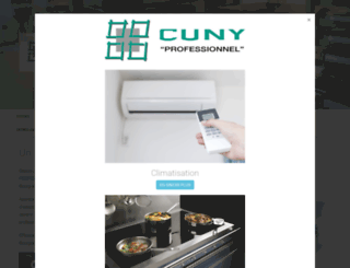 cunypro.com screenshot