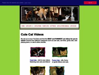 cutecatvideos.net screenshot