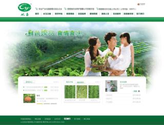 cyj.hk screenshot