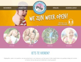 debollebuik.nl screenshot