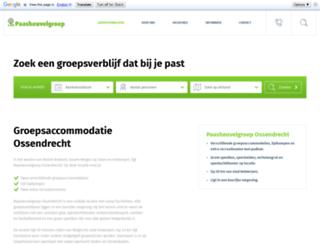 deluchtballon.nl screenshot