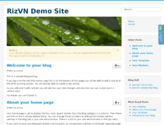 demo.rizvn.net screenshot