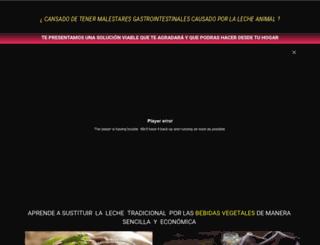destinomarketing.com screenshot