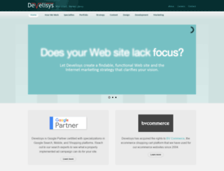 develisys.com screenshot