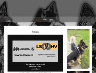 dhcn.nl screenshot
