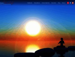 didemmoralioglu.com screenshot