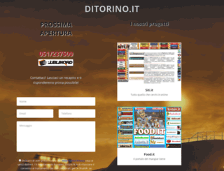 ditorino.it screenshot