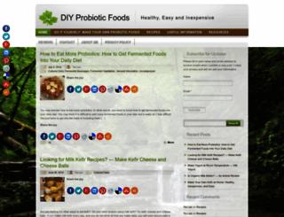 diyprobioticfoods.com screenshot