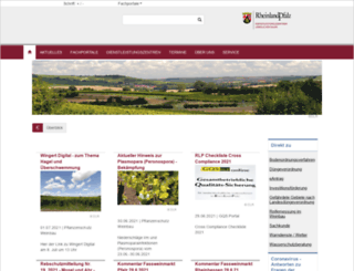 dlr.rlp.de screenshot