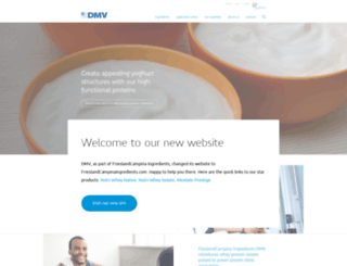 dmv-international.com screenshot