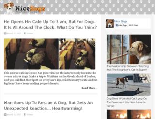 dog15.nicedogs.tv screenshot