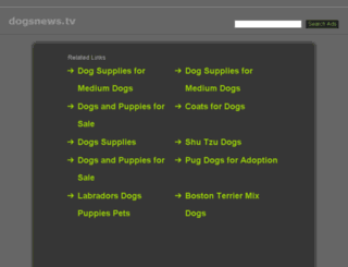 dogsnews.tv screenshot