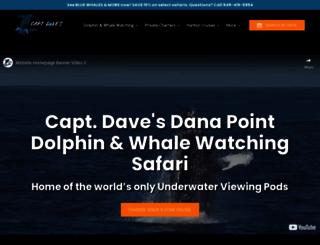 dolphinsafari.com screenshot