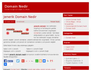 domainnedir.org screenshot