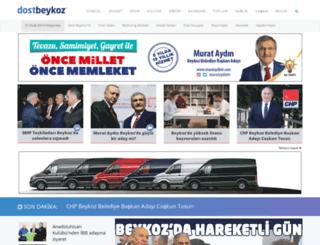 dostbeykoz.com.tr screenshot