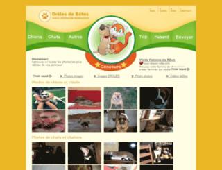 droles-de-betes.com screenshot
