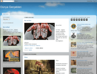 dunyagerceklerim.blogspot.de screenshot
