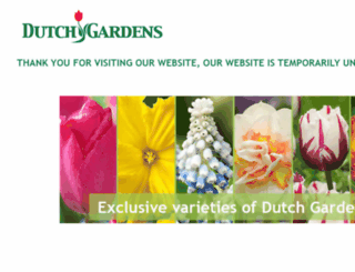 dutchgardens.co.uk screenshot