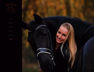 dutchtophorses.nl screenshot