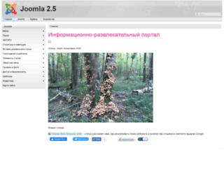 e-kzn.ru screenshot