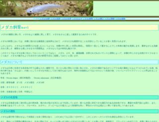 e-medaka.com screenshot