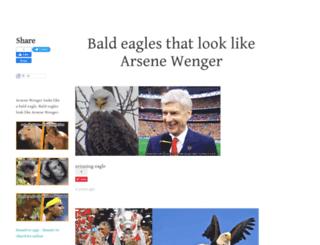 eaglesthatlooklikearsenewenger.tumblr.com screenshot