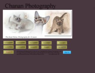 ebiz.chanan.com screenshot
