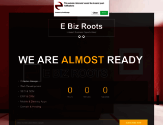ebizroots.com screenshot
