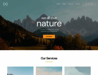 echo.com.ng screenshot