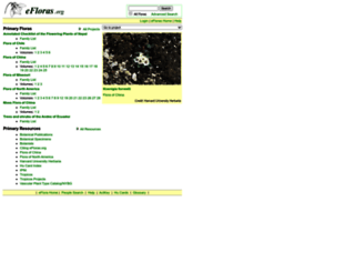 efloras.org screenshot