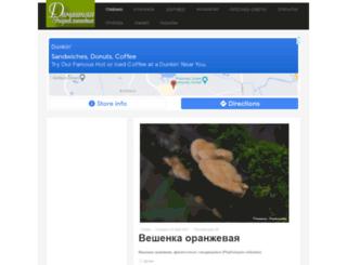 encdom.ru screenshot