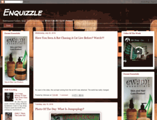 enquizzle.blogspot.com screenshot