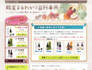 enzyme-jiten.com screenshot