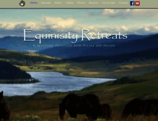 equinisity.com screenshot