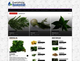 everythingessential.com screenshot