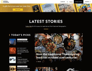 export911.com screenshot
