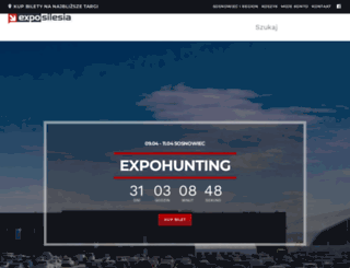 exposilesia.pl screenshot