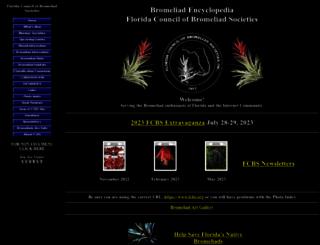 fcbs.org screenshot