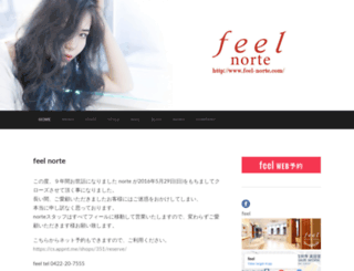 feel-norte.com screenshot