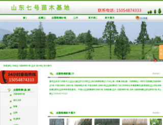 fgwtcn.com screenshot