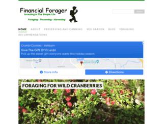 financialforager.com screenshot