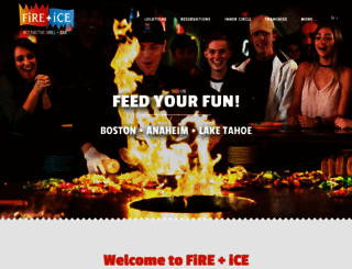 fire-ice.com screenshot