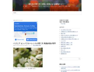 flower777.info screenshot